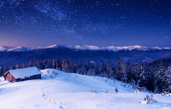 Picture forest, trees, mountains, night, house, stars