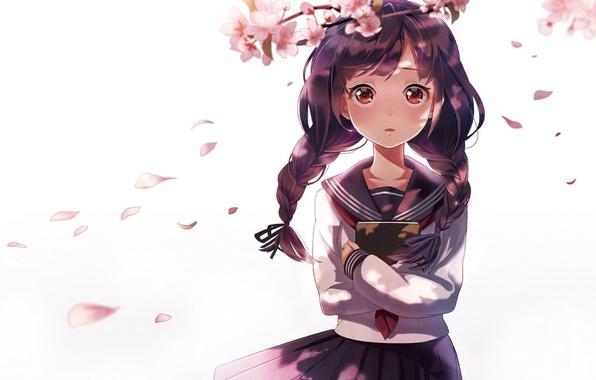 Picture girl, flowers, branch, anime, petals, Sakura, art, book, braids, form, schoolgirl, sheep sleep