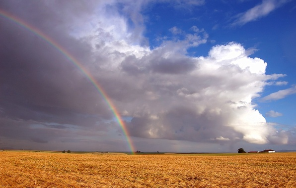 Picture field, clouds, rainbow