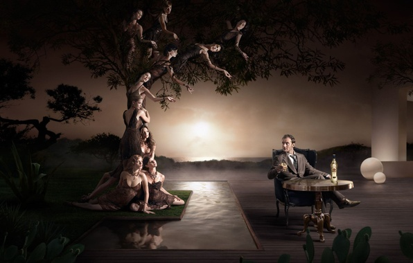 Picture women, sunset, table, tree, figure, alcohol, male
