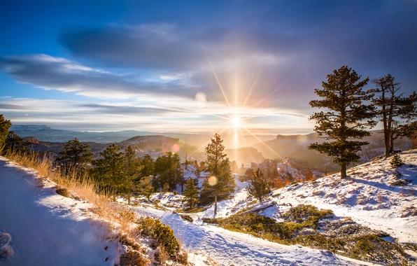 Picture winter, the sun, landscape, nature, dawn