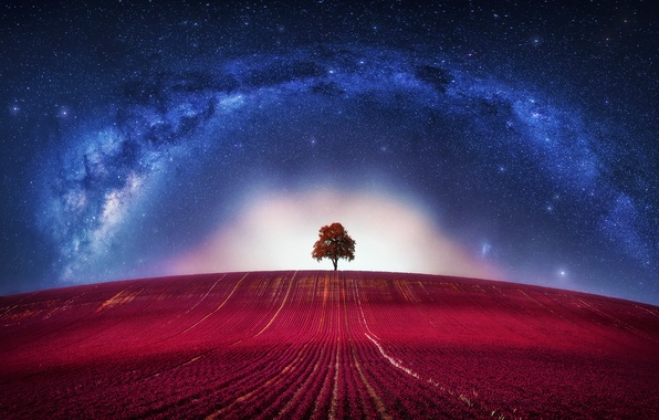 Picture Fantasy, Avatar, Clouds, Loneliness, Horizon, Tree, Galaxy, Lone, Way, Milky, Lonely