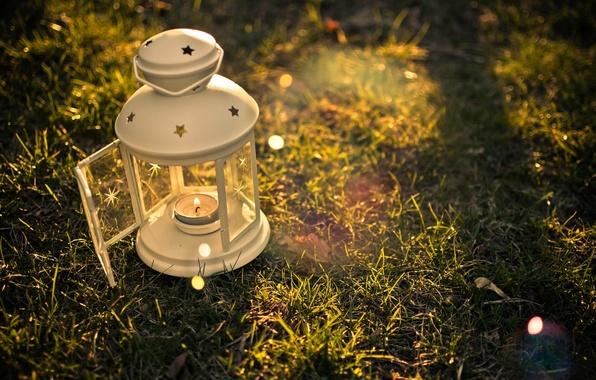 Picture greens, grass, the sun, background, fire, widescreen, magic, Wallpaper, mood, lamp, candle, beautiful, flashlight, lantern, …