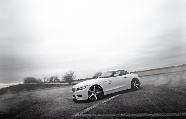 Picture fog, tuning, BMW, BMW, white, white, drives, E89