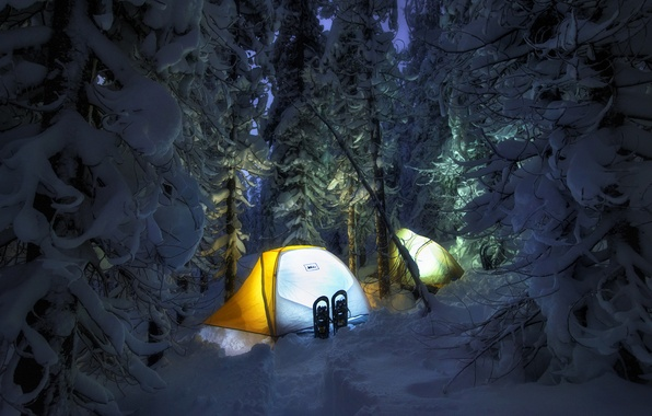 Picture winter, forest, light, snow, night, the snow, tent, journey, tourism, hike, halt, overnight