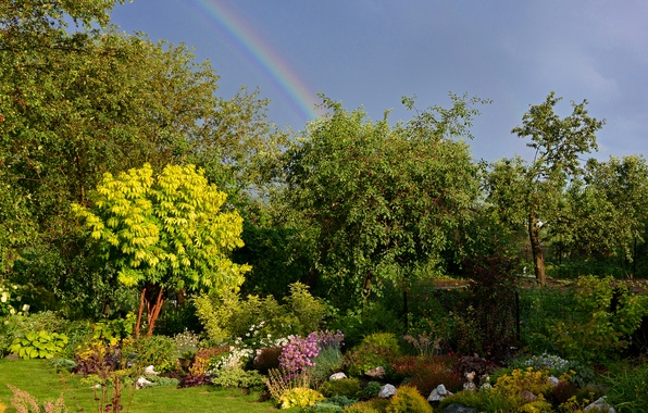 Picture greens, grass, the sun, trees, clouds, rainbow, garden, the bushes