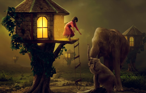 Picture art, girl, elephants