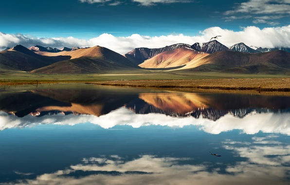 Picture the sky, clouds, flight, mountains, lake, reflection, bird, China, china, Tibet, tibet