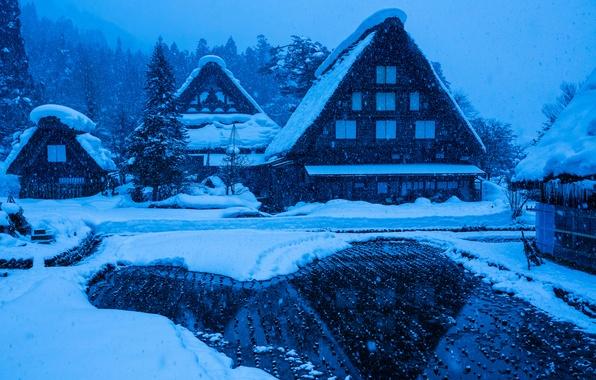 Picture winter, snow, house, Japan, the island of Honshu, Gokayama, Shirakawa-go