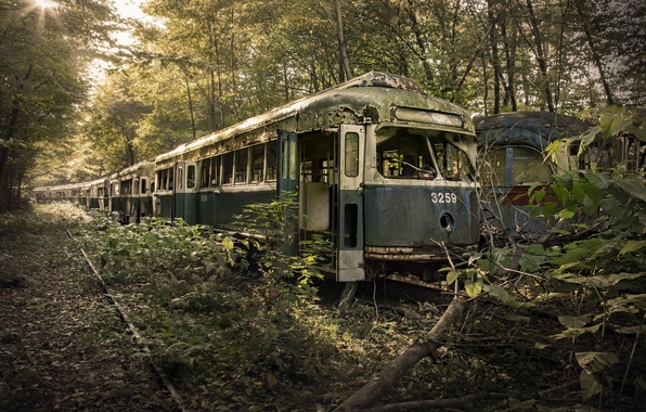 Picture cars, scrap, End Of The Line