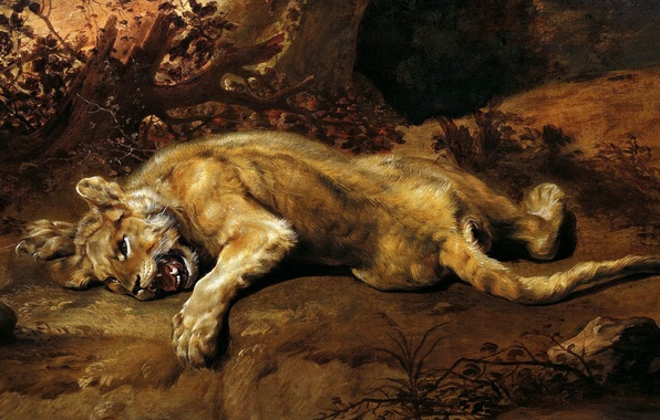 Picture cat, predator, claws, fangs, painting, Art, the Golden age