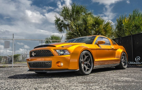 Picture Mustang, Ford, Shelby, GT500, muscle car, front, orange, Super Snake, Ultimate Auto, Vellano Wheels, wide …