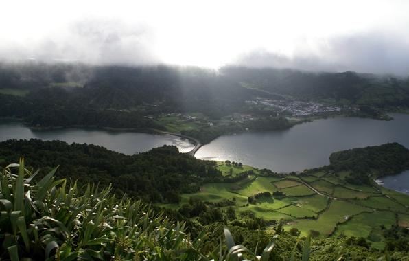 Photo wallpaper field, meadows, lake, greens, nature, fog, landscape