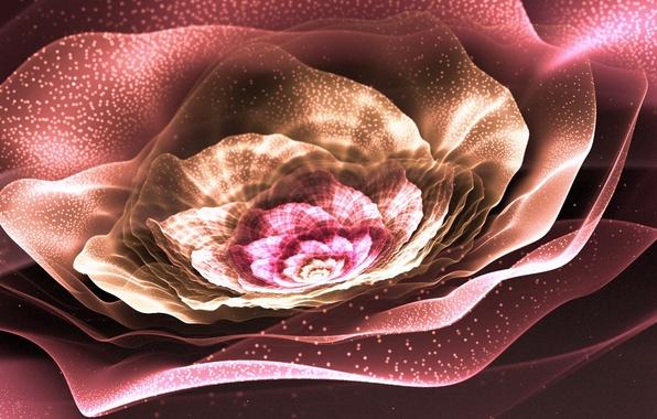 Picture flower, lights, pollen, petals, art, fractal
