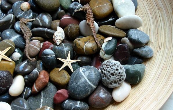Picture macro, stones, sea
