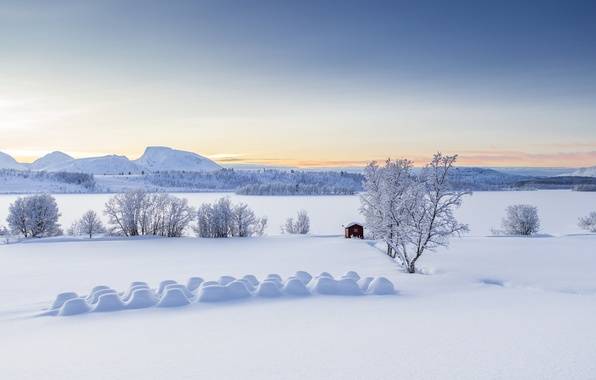 Picture winter, snow, trees, mountains, hut, Norway, panorama, the snow, Norway, Troms, Troms, Lyngen Alps, Balsfjord, …