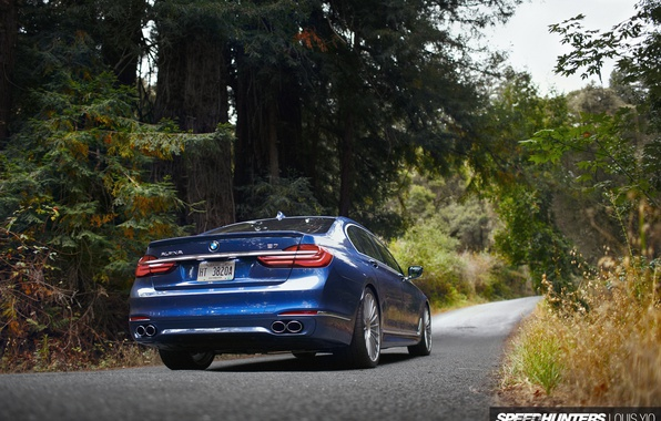 Picture road, forest, nature, BMW, ALPINA, B7 19