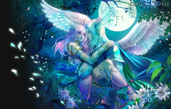 Picture night, wings, elves, perfect world
