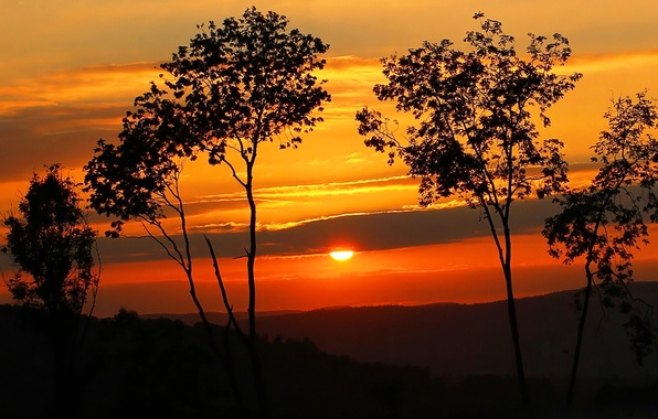Picture the sky, the sun, clouds, trees, sunset, hills, silhouette
