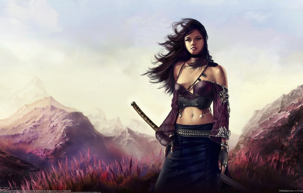 Picture grass, girl, landscape, mountains, the wind, sword, katana, art, aldo martinez calzadilla