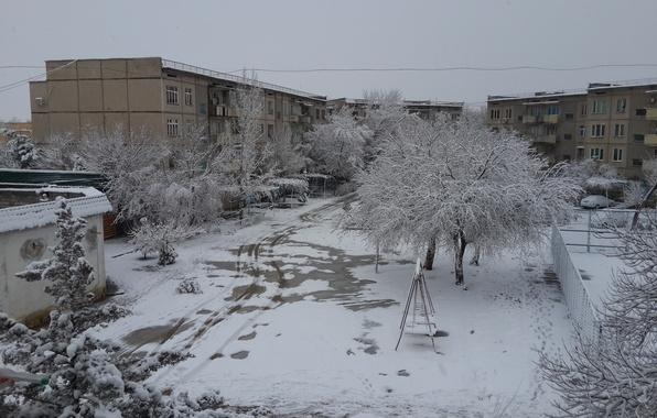 wallpaper winter snow uzbekistan zima uzbekistan sneg. Black Bedroom Furniture Sets. Home Design Ideas