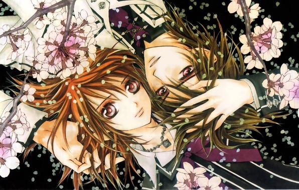 Picture look, girl, flowers, smile, hair, petals, Sakura, vampire, form, guy, vampires, students, touch, Knight-vampire, Vampire-Knight, …