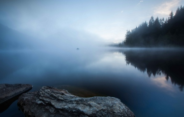 Picture forest, fog, lake, fisherman, morning