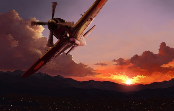 Picture sunset, the city, lights, the plane, art, in the sky