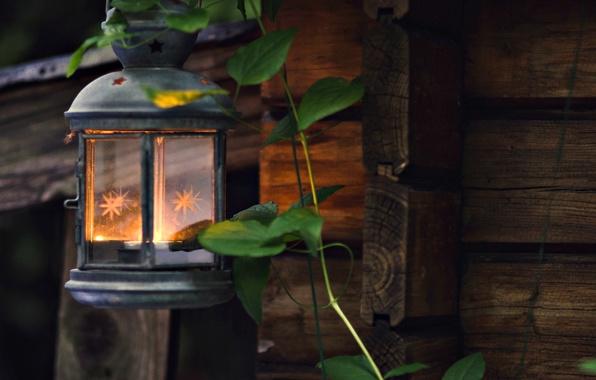 Picture leaves, light, background, fire, widescreen, Wallpaper, mood, flashlight, lantern, wallpaper, leaves, widescreen, background, full screen, …