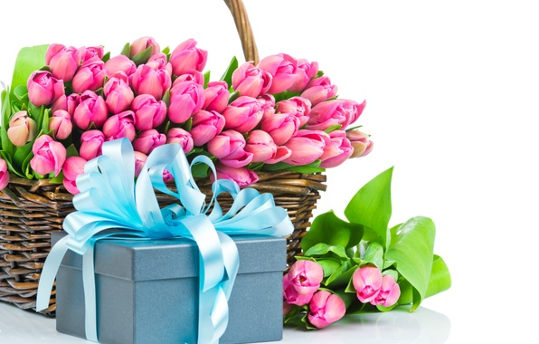 Picture flowers, Tulip, bouquet, pink tulips