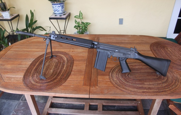 Picture table, rifle, automatic, FN FAL, Steyr Stg.58