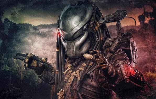 Picture alien, Predator, Predator