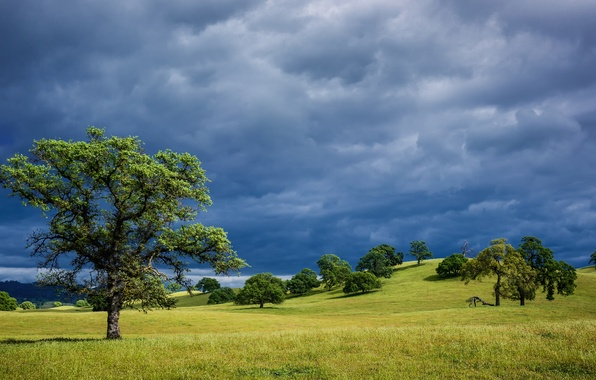Picture the sky, grass, trees, landscape, clouds, hills, spring, CA, USA, blue, storm