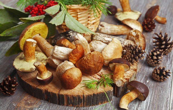 Picture autumn, nature, berries, table, mushrooms, food, blur, red, white, bumps, Rowan, dumb-dumb, bokeh, wallpaper., boletus