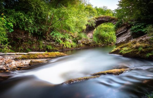 Picture greens, trees, landscape, bridge, nature, Park, river, stones, valley, Scotland, UK, Scotland, Great Britain, Alba
