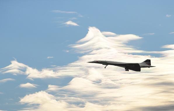 Picture British Airways, Concorde, Speedbird
