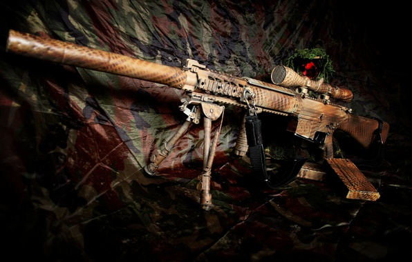 Picture weapons, rifle, sniper, self-loading, SR-25