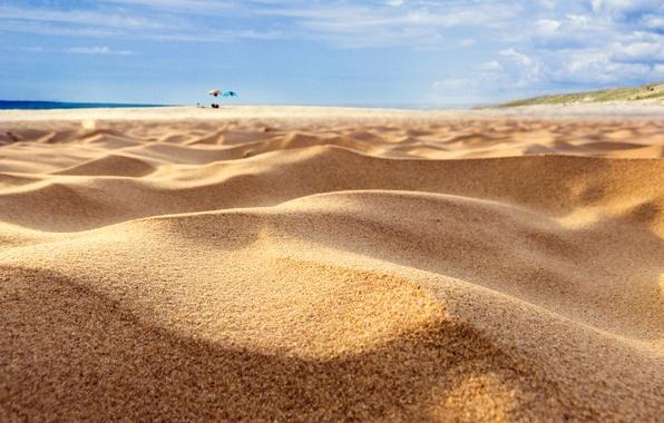 Picture sand, sea, beach, focus, umbrellas