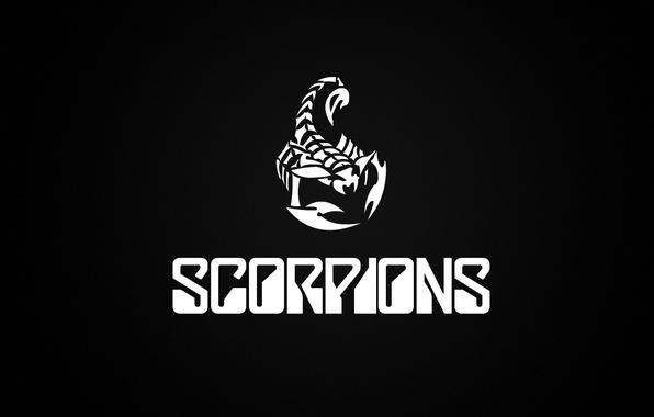 Picture minimalism, logo, group, rock, scorpions