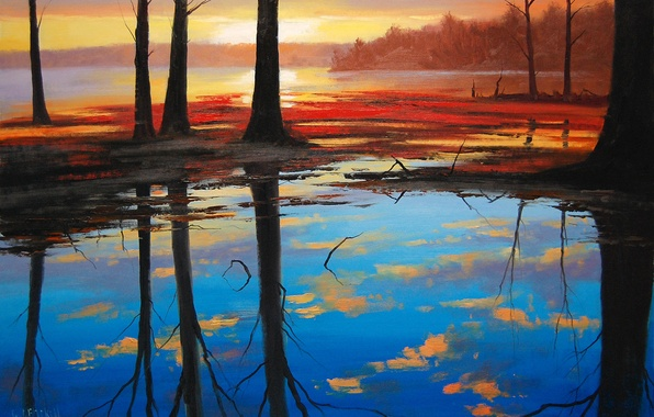 Picture forest, water, trees, nature, lake, reflection, sunrise, dawn, trunks, morning, art, artsaus