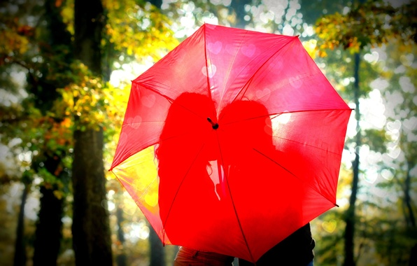 Picture leaves, girl, the sun, trees, love, red, nature, umbrella, background, Wallpaper, romance, mood, foliage, woman, …
