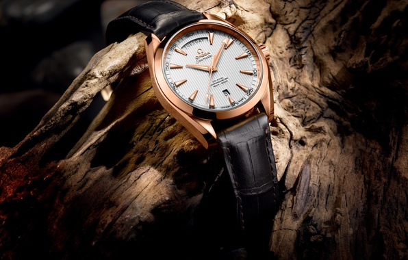 Picture watch, OMEGA, 2013 - The Seamaster Aqua Terra Day-Date, BASELWORLD