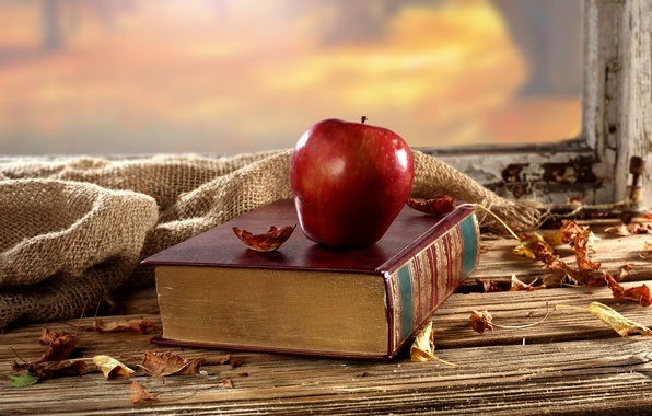 Picture autumn, leaves, table, background, Apple, window, dry, book