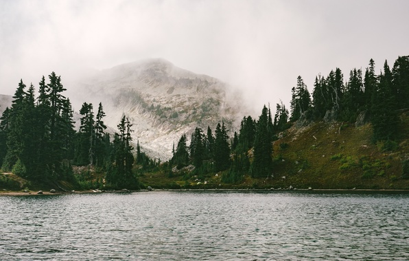 Picture Mountains, Fog, Lake, River, Forest, Beauty, Landscape, Freshness, The air