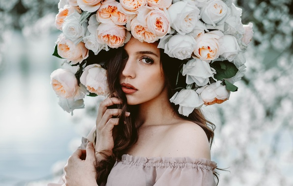 Picture look, girl, flowers, face, roses, beauty