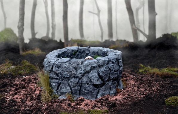 Picture forest, fog, toys, hand, well, The Ring, Offering Yamamura