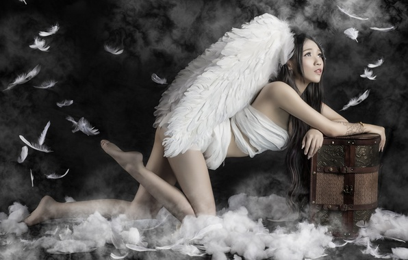 Picture pose, wings, feathers, Asian, chest
