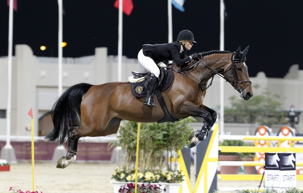Picture horse, sport, horse, rider, jumping, horse riding, show jumping, edwina tops-alexander, equestrian