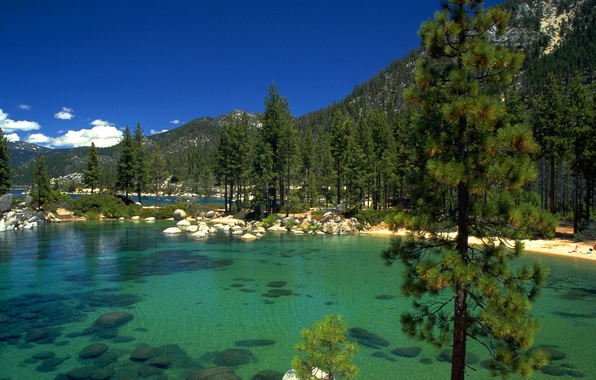 Picture forest, lake, stones, California, lake Tahoe
