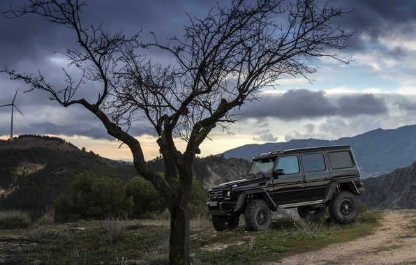 Picture Concept, tree, black, Mercedes-Benz, the evening, Mercedes, BRABUS, 4x4, AMG, Benz, W463, 2015, G 500